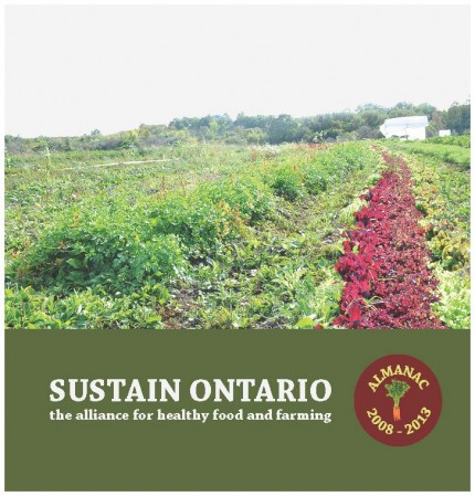 Sustain Ontario 4 Year Report (Nov 16) cover