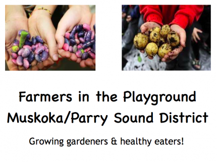 Click to View Farmers in the Playground Slideshow Presentation