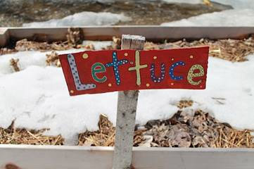 A little reminder of what was to come in the Evergreen Heights school garden in Emsdale. Credit: Kelli Ebbs.